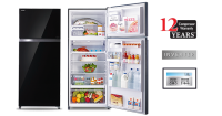 Toshiba 2 Door Fridge [GR-HG55MDZ XK]